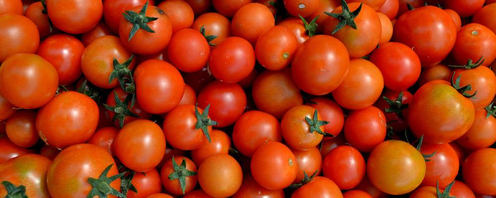 produce008
